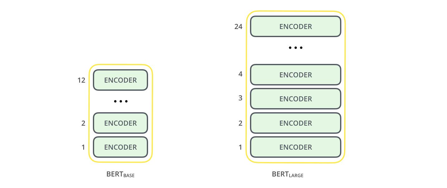 BERT encoder
